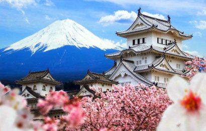 日本去年取消832名外國人居留資格